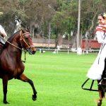 PACHACAMAC PYRAMIDS & PERUVIAN DANCE HORSE SHOW